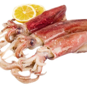 Calamar petit